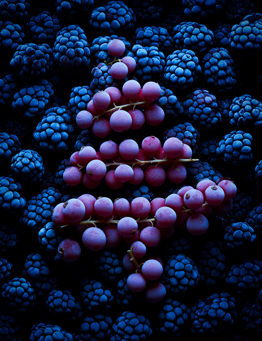 Black currants and blackberries xmas | Colin Campbell - Food Photographer