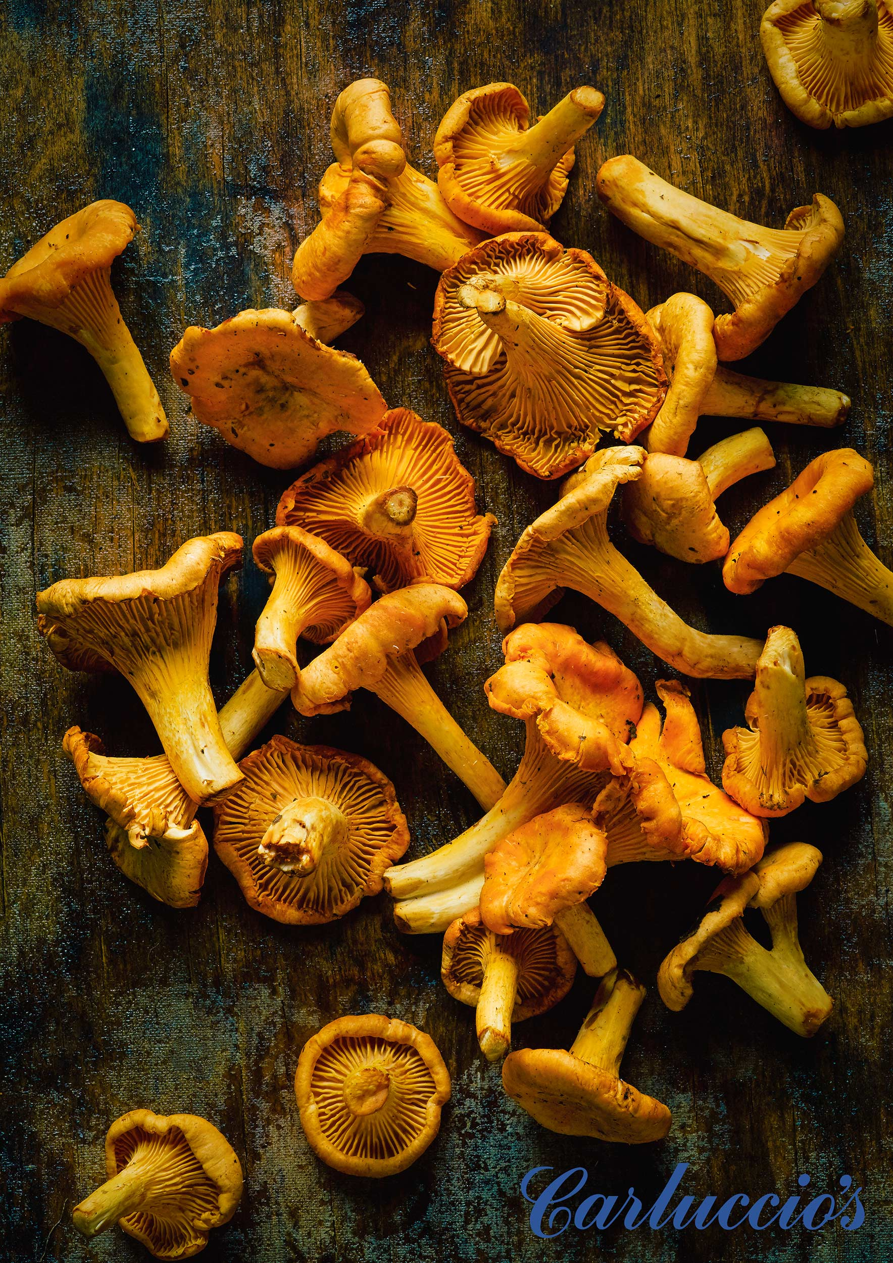 Carluccios-Autumn-Mushrooms