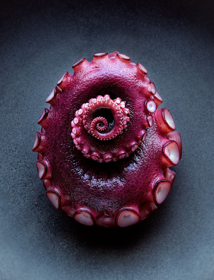 Octopus Tentacle | Colin Campbell - Food Photographer