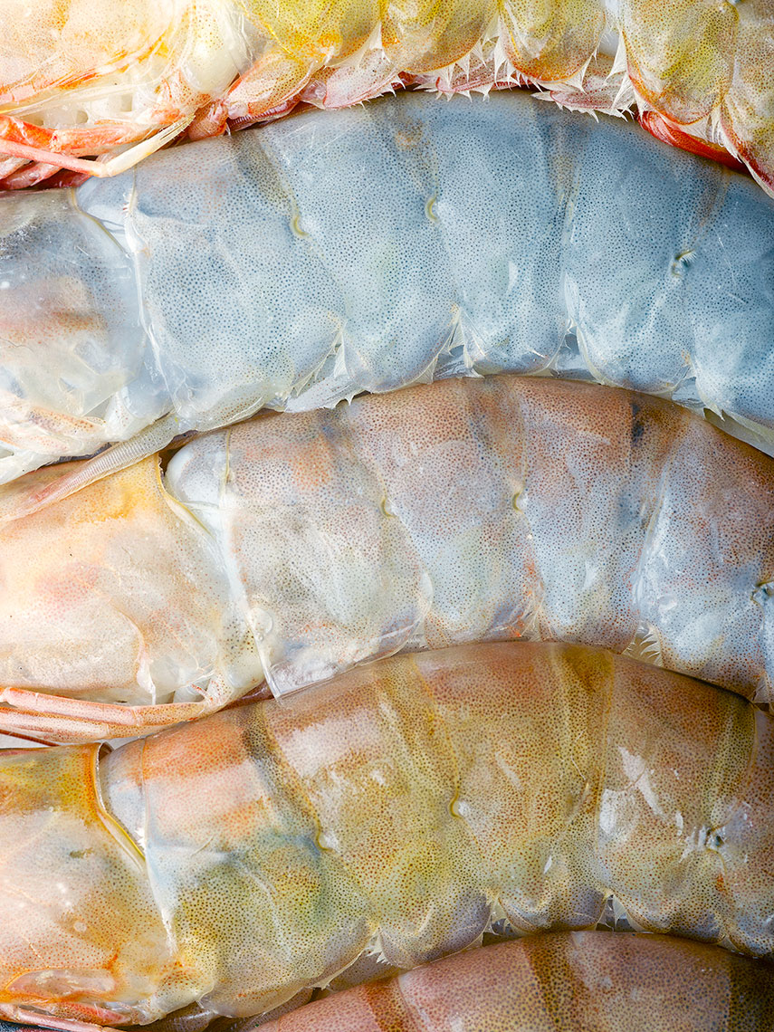 Prawn skins | Colin Campbell - Food Photographer