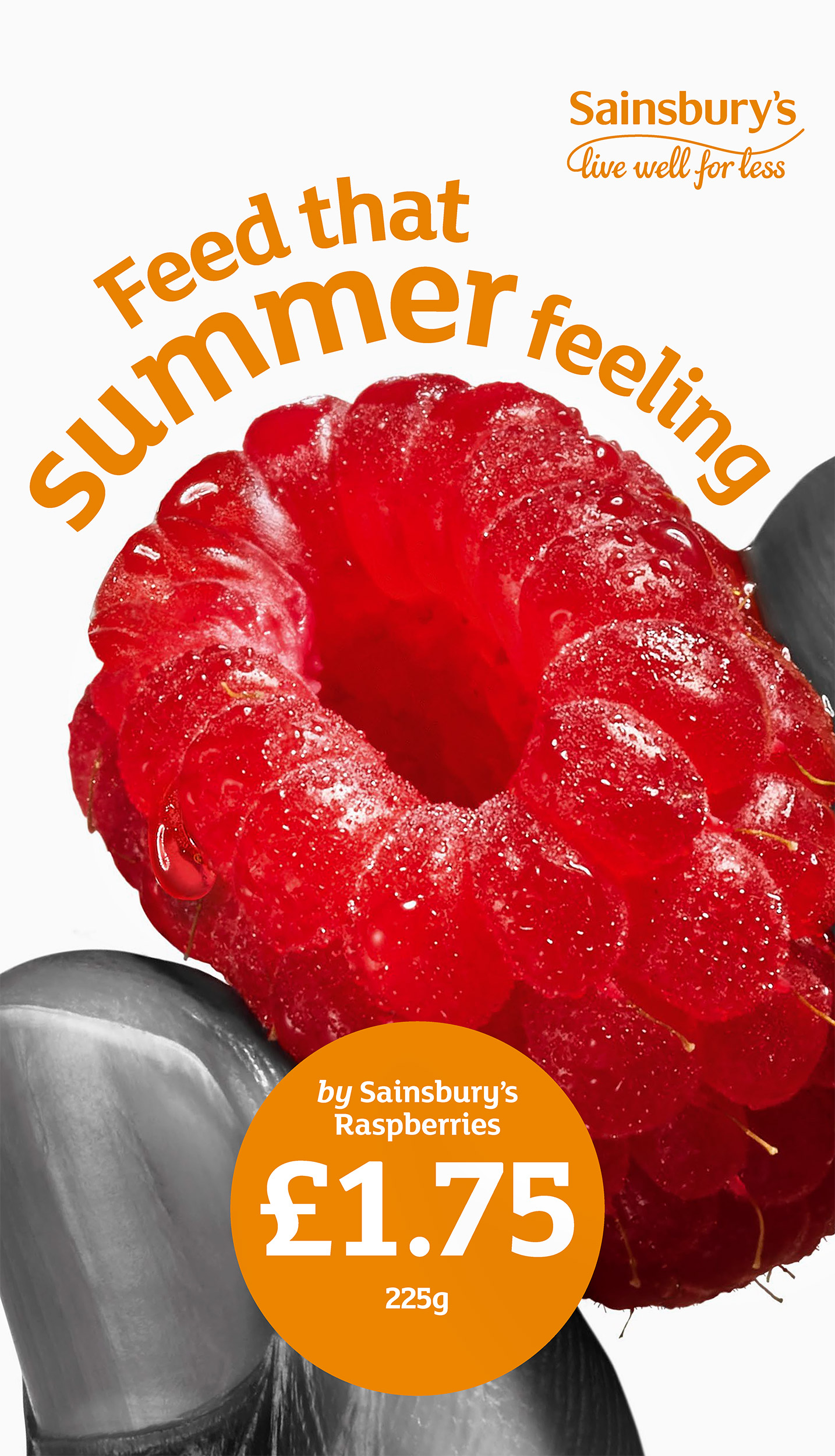 Sainsburys-Summer_Raspberry